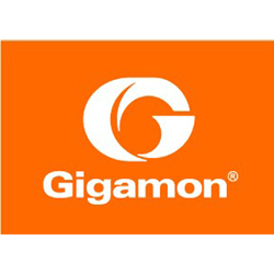 Gigamon Flow Monitoring Lösung
